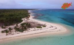 AWAK-Guadeloupe-excursion-petite-terre-pointe-sable