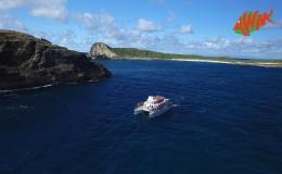 AWAK-Guadeloupe-excursion-petite-terre-Pointe-des-Chateaux03
