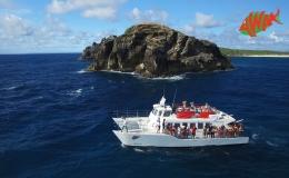AWAK-Guadeloupe-excursion-petite-terre-Pointe-des-Chateaux04