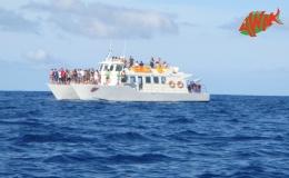 AWAK-Guadeloupe-excursion-petite-terre-traversée-pleine-mer