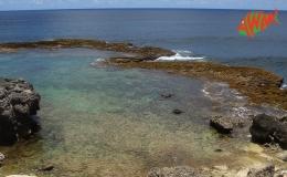 AWAK-Guadeloupe-excursion-petite-terre-barriere-de-corail