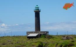 AWAK-Guadeloupe-excursion-petite-terre-phare02