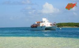 AWAK-Guadeloupe-excursion-petite-terre-arrivée01