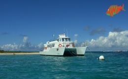 AWAK-Guadeloupe-excursion-petite-terre-mouillage01