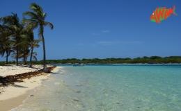 AWAK-Guadeloupe-excursion-petite-terre-plage01