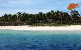 AWAK-Guadeloupe-excursion-petite-terre-plage02